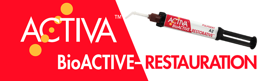 Activa-bioactive-restauration-Antarctica